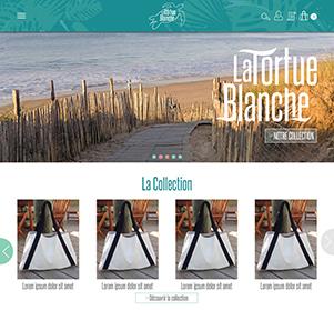 web_design_tortue_blanche_vignette